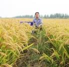高科技肥料